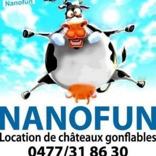 Nanofun