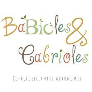 Babioles&Cabrioles Co-Accueillantes Autonomes