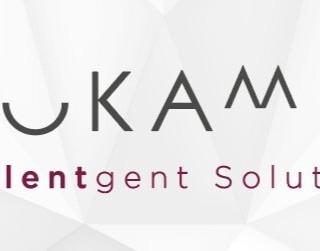 Okami Intalentgent Solutions