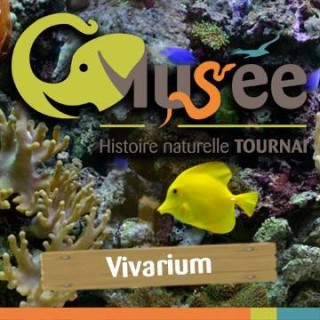 Musée d'Histoire naturelle & Vivarium