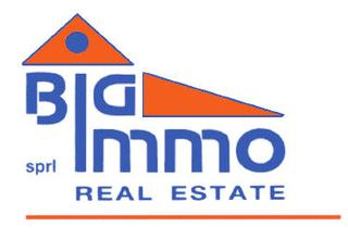 Big Immo Real Estate