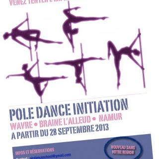 Air Dance School- cours de Pole Dance
