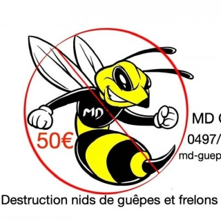 MD Guêpes