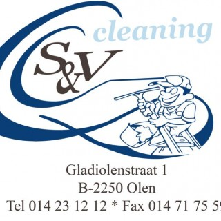 S & v home cleaning