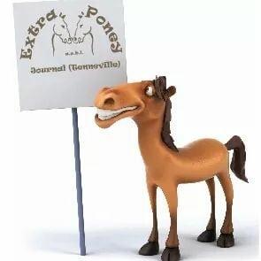 Extra Poney ASBL