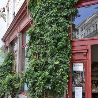 Orybany Atelier/Boutique