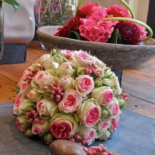 Fleur et Couleurs