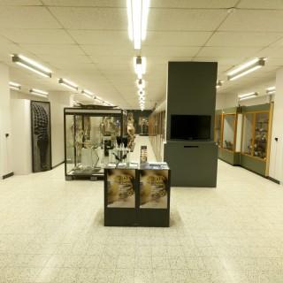 Musée de Zoologie et d'anthropologie de l'ULB