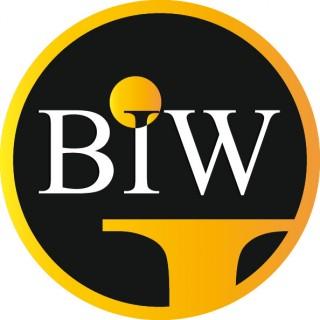 BIW Agency- Best Imaging Web