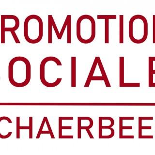 Promotion sociale de Schaerbeek