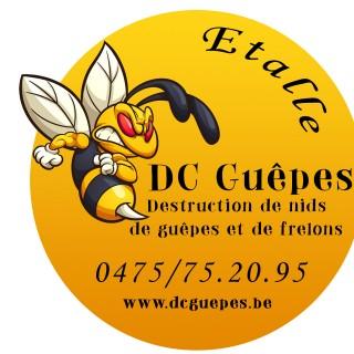 DC Guêpes