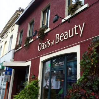 The Oasis of Beauty