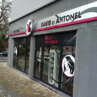 David et Antonel