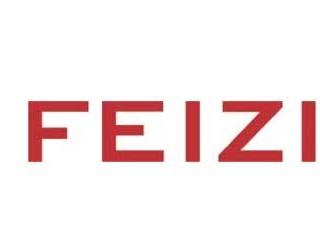 Feizi gallery
