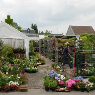 Au Jardin de Georges