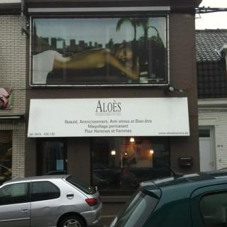 Aloès