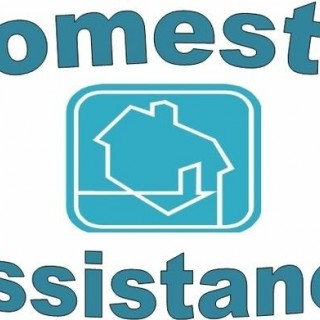 Domestic assistance