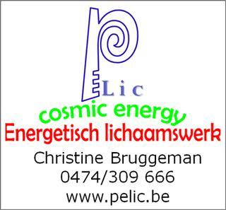 Bruggeman Christine