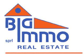 Big-Immo Real Estate