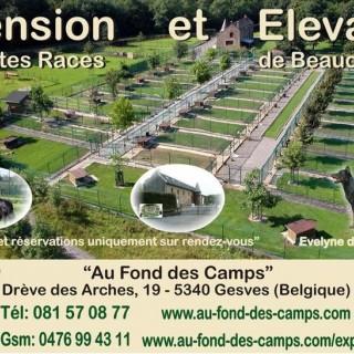 Au Fond Des Camps