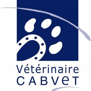 Cabvet