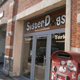 Sisterdogs yorki