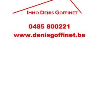 Goffinet Denis