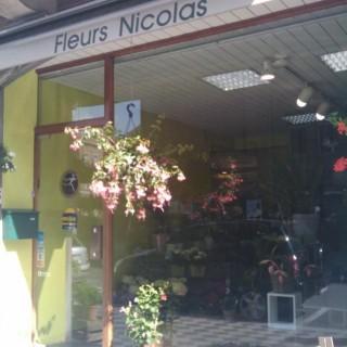 Nicolas Fleurs
